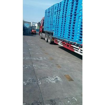 供应榆林市工厂专用叉车板和上货架的托盘