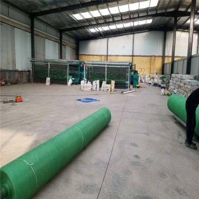 土面覆盖绿网 土地面覆盖防尘网 绿色防尘网价格