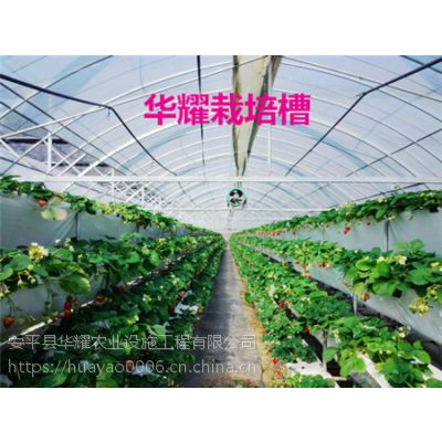 华耀常年提供江苏草莓立体种植槽及管理技术