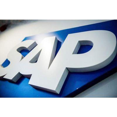 企业sap咨询与实施业务-虹信软件有限公司