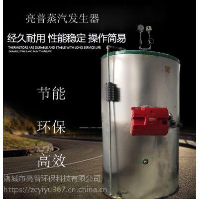 取暖燃气锅炉 亮普安全性高