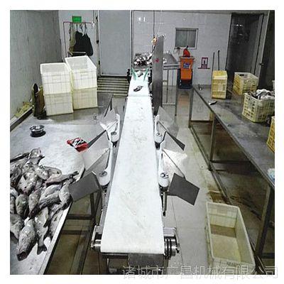 山东广昌批发食品自动分级机 罗非鱼重量分拣机 选别机械设备