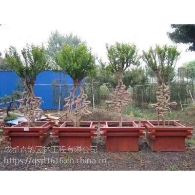 有生命的中国字造型,国内象征吉祥的信物,高2米中国盆景造形