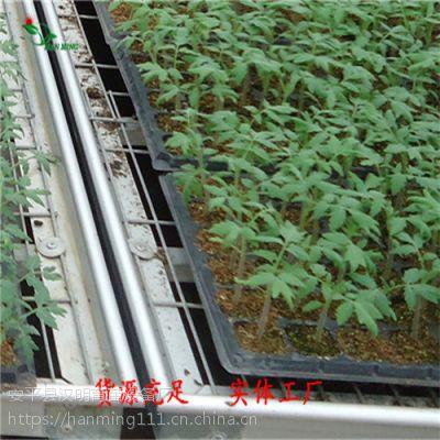 现货供应整体苗床-安平汉明育苗设备