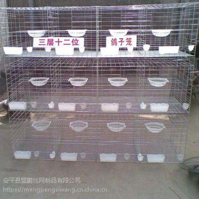 四层鸽子笼丨立体式肉鸽养殖笼丨16位多笼位