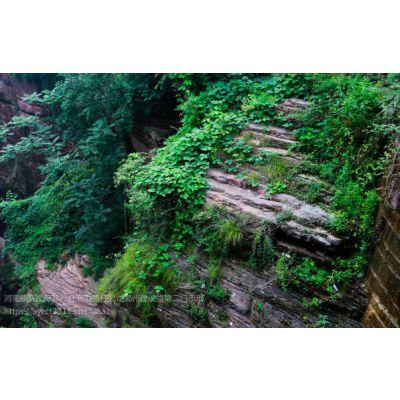 河南周边有哪些有名的旅游景点?河南周边两日游路线推荐