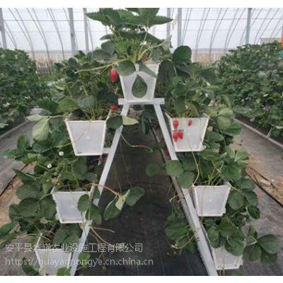 大棚草莓种植槽 A型架草莓栽培槽