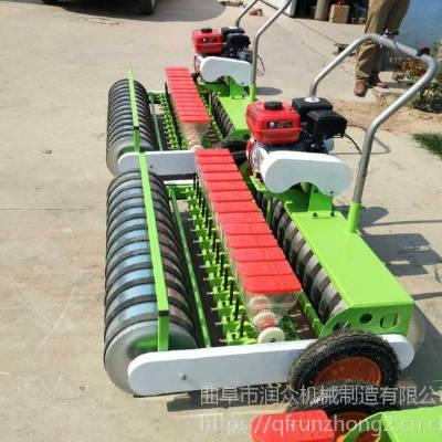 种菜机 菠菜小型精播机 新一代蔬菜播种机