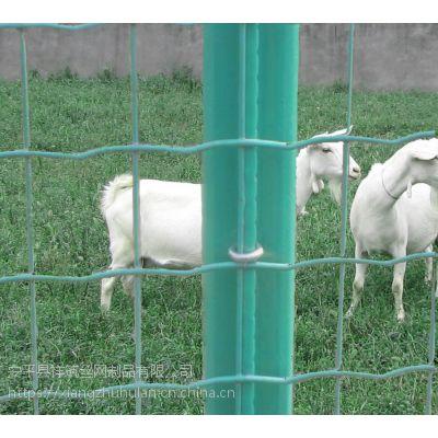 散养鸡栅栏 河南养殖隔离网 散养鸡围网厂家/祥筑散养鸡栅栏