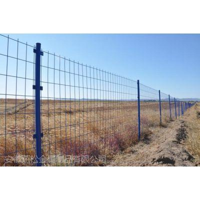 安徽滁州园林围栏 护栏网 养殖围网 球场围栏 小区隔离网 草坪PVC护栏
