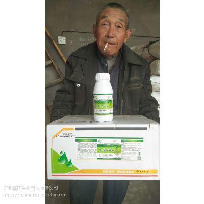 河北幕田药材专用生根营养素 富含生根因子和强力生根剂