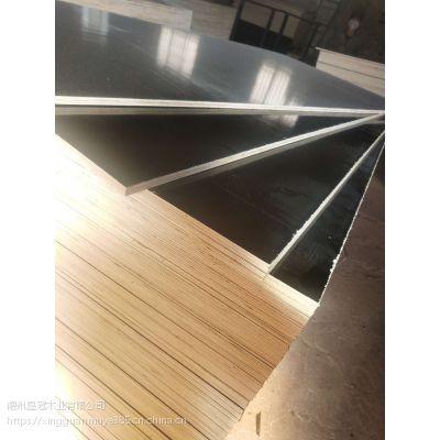 济南工程用清水模板杨木全整芯山东德州星冠木业