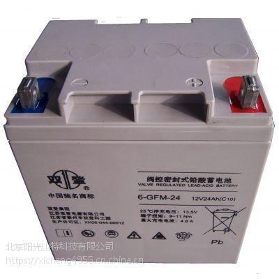 Shoto双登蓄电池12V24AH正品直销