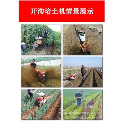 农用手扶打垄机 黄姜培土机 润众