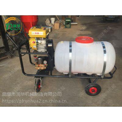 厂家直销四轮喷雾器 高效高压远程手推杀虫机 牛舍消毒打药车