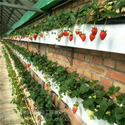 温室高架育苗增产设施华耀立体种植槽