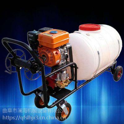 园林果园杀虫打药机 家用农田草坪拉管喷雾器 蓝海制造
