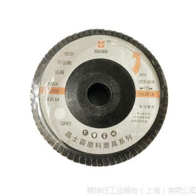 晶士霸 经济型塑盖百叶片 E10060 100×16-P60 30片/包