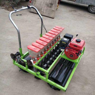 生产供应蔬菜播种机药材精播机汽油动力蔬菜精播机