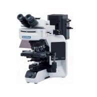 OLYMPUS奥林巴斯 BX53 荧光显微镜