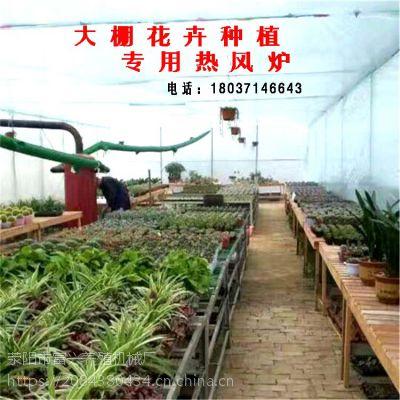 蔬菜大棚花卉热风炉 暖风机养殖育雏风机厂家供应多种型号热风炉可定制