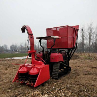 供应大型玉米秸秆圆盘式青储机 丘陵地带专用履带式青储机 青贮收割机