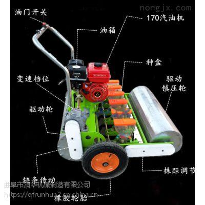 免间苗蔬菜精播机 红心萝卜精播机 汽油机带动油菜播种机