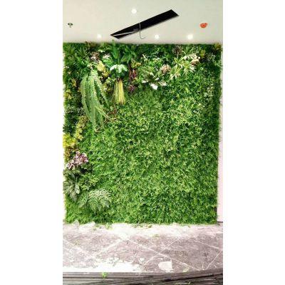 绿雕是什么-绿雕-美尚园艺-品质保证
