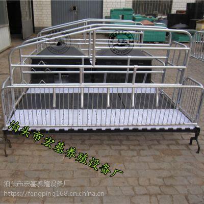 河北宏基供应双体母猪产床 产保一体两用床
