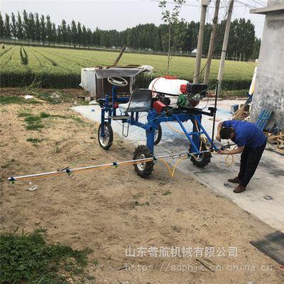 普航 拉管式杀虫打药机 花圃远射程高压喷药机 四轮打药机厂家