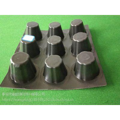 融创排水板 蓄排水板 聚乙烯防水板规格齐全 价格合理