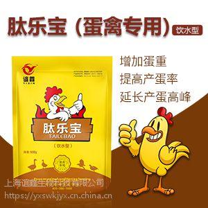 蛋鸭吃什么饲料下蛋多 蛋鸭增蛋素 白金肽效果怎么样