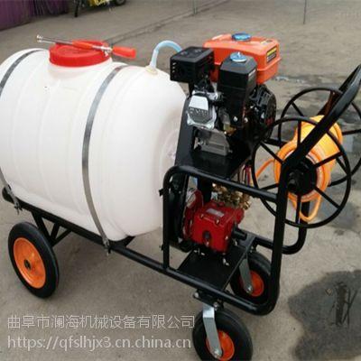 农田菜地专业推车式打药机 覆盖面积广园林喷雾器 快速油耗低