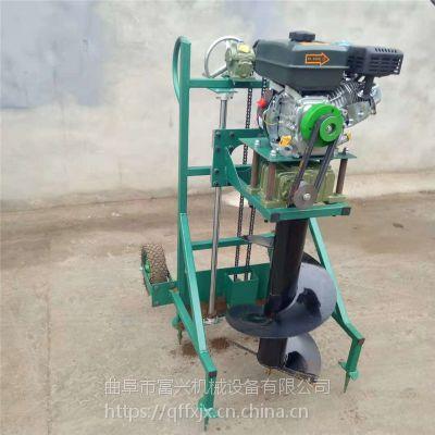 施肥种植均可用的挖坑机 便携式植树打坑机 汽油手提式螺旋打眼机图片