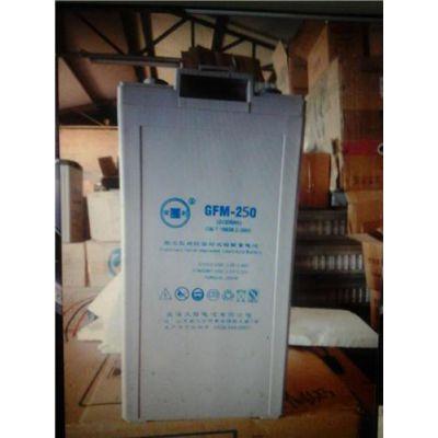 牛盾ND蓄电池NPG12100 12V 100AH 免维护蓄电池不间断UPS电源用