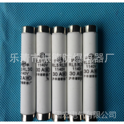 厂家直销中国电光防爆开关配件 熔断器RL5-30/1140V