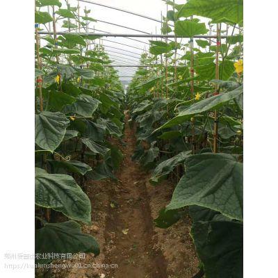 光碳肥二氧化碳吸收剂作用特点