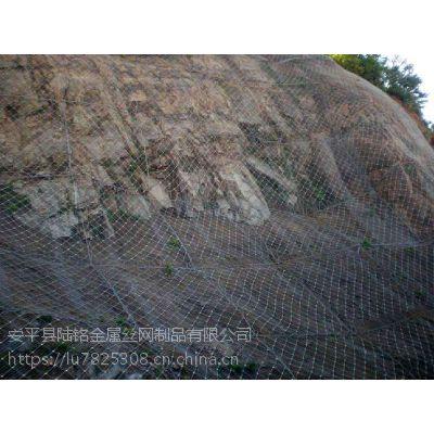 陆铭供应高速公路边坡防护网 主动防护网
