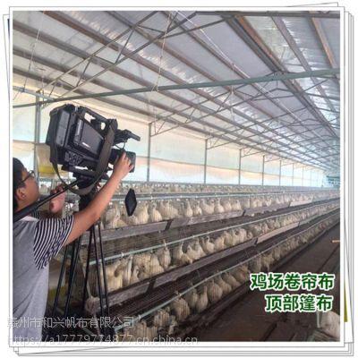 湖南猪栏挡风卷帘图片 防水卷帘篷布安装 养殖牛场保暖帆布按尺寸定做