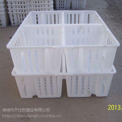 加隔断鸡苗运输箱 雏禽周转箱鸡苗箱运输