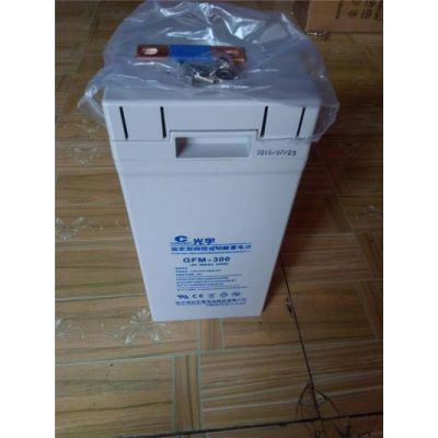 原装光宇蓄电池6-GFM-24 光宇蓄电池12V24AH 工业ups机房用保五年