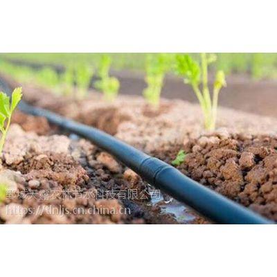 红薯山药滴灌安装多少钱一亩