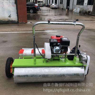 韭菜播种机 菠菜种植机价格 手推式蔬菜播种机型号 鲁强机械