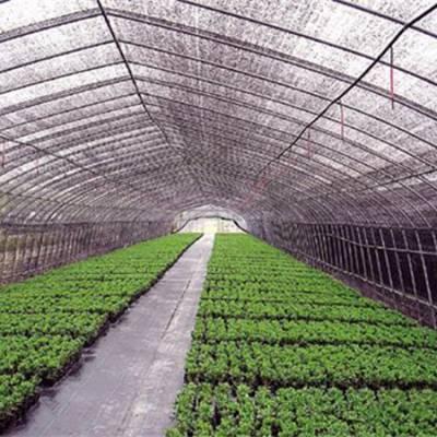 玻璃连栋温室建造-玻璃连栋温室-立辉润悦建筑装饰工程