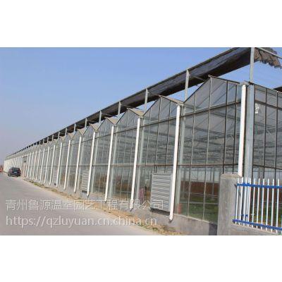 北京花卉园艺景观温室大棚5米16玻璃、10级抗风1.5万平方项目承接公司