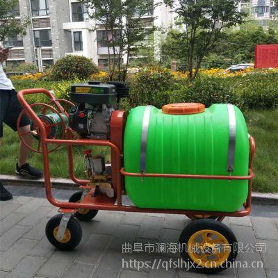 贵州推车式喷雾机多功能果园打药机框架式喷雾器 澜海直销