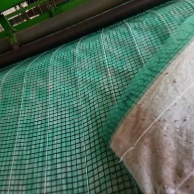 赣州矿上绿化治理椰丝毯 一体化草毯 赣州植草毯 植物纤维毯