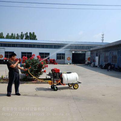 柴油拉管式高压打药机/高空喷射柴油喷雾器/高压远程果树喷雾机