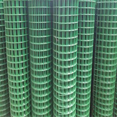 绿色铁丝围网 浸塑荷兰网 养殖铁丝网