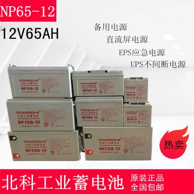 北科蓄电池NP65-12 12V65AH太阳能发电系统 工业安防 UPS应急电源